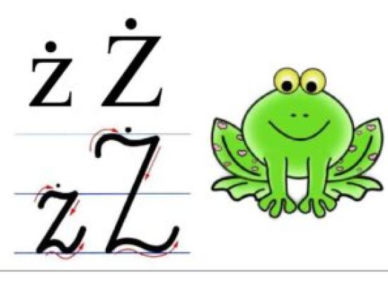 """zdjęcie do artykułu: Uparty kogut. Wprowadzenie litery """"Ż, ż"""""""