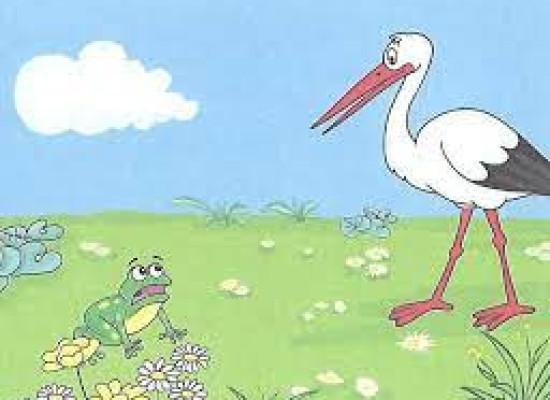 zdjęcie do artykułu: Żabki i bocian.